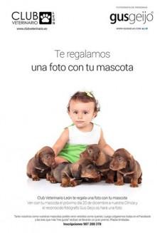 Concurso fotografía Club Veterinario León